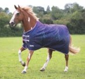 "Shires Tempest ""Purple Lightning"" Waterproof Sheet"