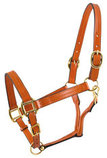 Showman Leather Adjustable Halter, Full