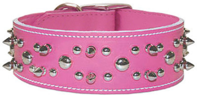Signature Leather Protector Collar