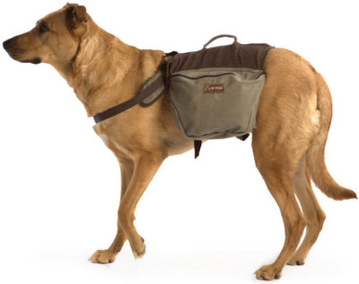 Small Dog Backpack