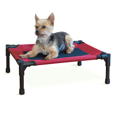 Elevated Dog Bed, Small