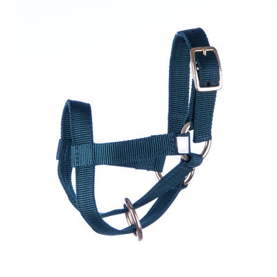 Jeffers Small Goat Halter