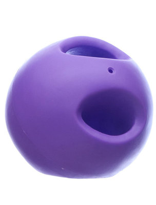 Soft-Flex Powerhouse Dog Toy, Purple, 5.5""