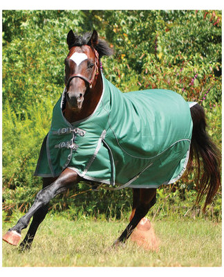 Solaris 1200D Extended Neck Medium Turnout Blanket, Hunter