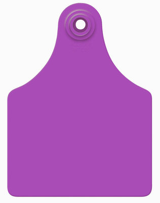Allflex Blank Custom Color Ear Tags (Maxi), 25 count