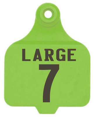 Duflex Custom Numbered Panel Ear Tags (Large), 25 count