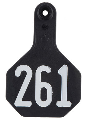 Special Order Numbered Y-Tex Tags, Medium