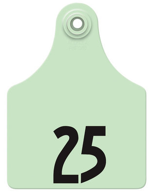 Allflex Custom Numbered Ear Tags (Maxi), 25 count