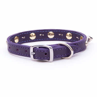 "Spike & Stud Signature Collars, 1/2"" x 10""-14"""