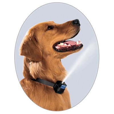 Spray Sense Anti Bark Dog Collar