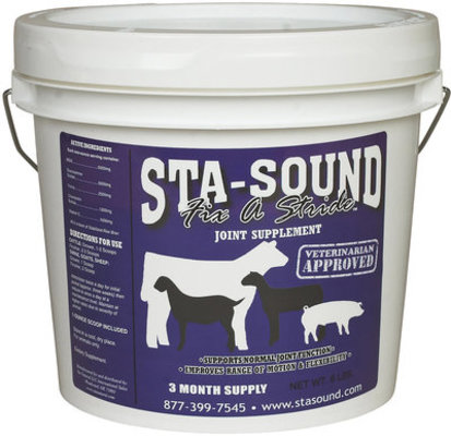 Sta-Sound Fix a Stride Joint Supplement