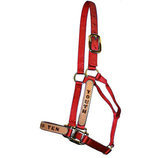 Personalized Halters for Horses, Standard (800-1100 lb)