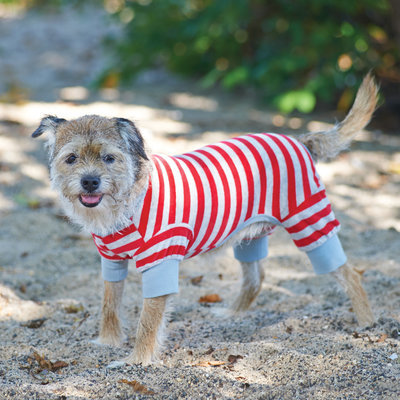 X-Small Red Striped Dog Pajamas