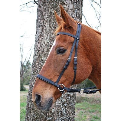 Synthetic Black Beta Webbing Bitless Bridle
