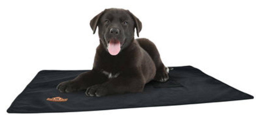 TechNiche Air-Activated Heating Dog Pad w/ HeatPax
