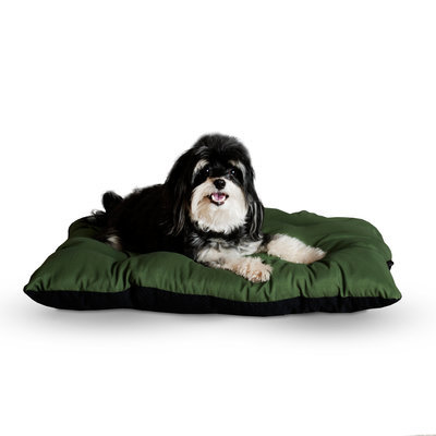 "Small (19"" x 24"") Sage Green Thermo-Cushion"