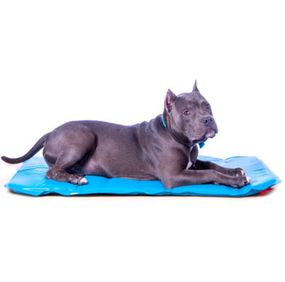 Canine Cooler® Pet Bed