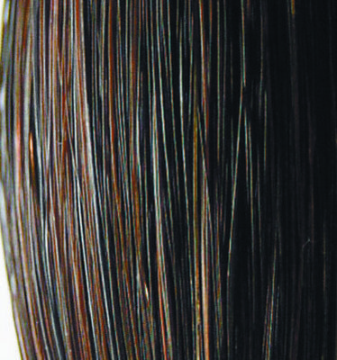 Trophy Tails Hunter Horse Tail Extensions, 1/2 lb