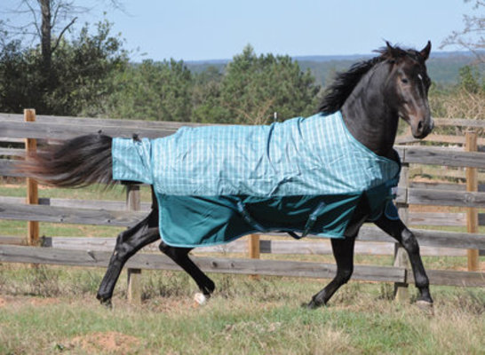 TuffRider Bonum Standard Neck Turnout Blanket, Medium