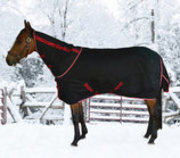 Optimum Outer Armour Detachable Neck Horse Turnout Blanket