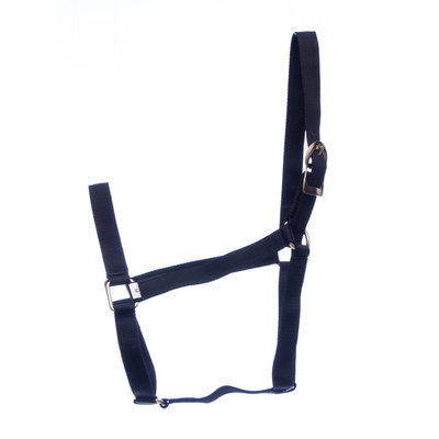 Jeffers Turnout Halter, 2-yr old (600-900 lb)