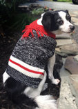 Twisted Yarn Dog Sweater