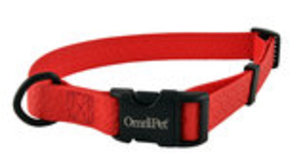 "1"" Ultra Sport All Weather Dog Collar, 18-26"""