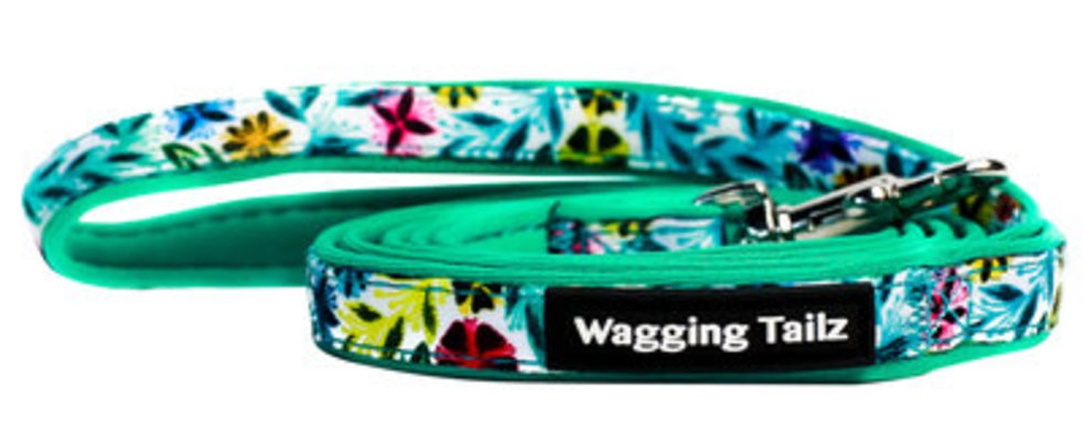 Wagging Tailz miniZ Spring/Summer Collection Lead