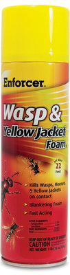 Enforcer Wasp & Yellow Jacket Foam, 16 oz