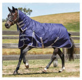 WeatherBeeta ComFiTec Essential Combo Neck Turnout Blanket, 220g