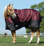 WeatherBeeta ComFiTec Essential Std. Neck Horse Blanket, 220g