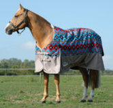 WeatherBeeta ComFITec Essential Standard Neck Turnout Blanket