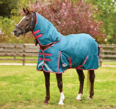 WeatherBeeta ComFiTec Plus Dynamic Detach-A-Neck Turnout Blanket, 220g