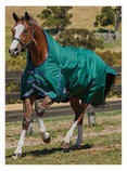 WeatherBeeta ComFiTec Plus Dynamic High Neck Horse Blanket, 220g