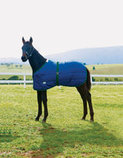 WeatherBeeta Medium Weight Foal Blanket