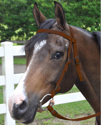 Nylon Bridle w/ Split Reins