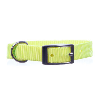"Jeffers 5/8"" Nylon Dog Collar, 10"" L"