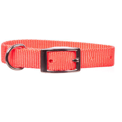 "Jeffers 5/8"" Nylon Dog Collar, 12""L"
