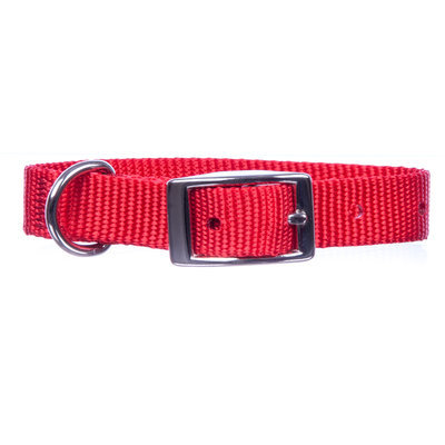 "Jeffers 5/8"" Wide Dog Collar, 14""L"