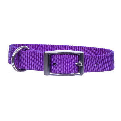 "Jeffers 5/8"" Wide Collar, 16""L"