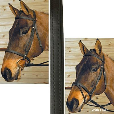 Wintec Bridle (no flash)