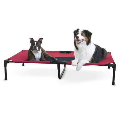 Elevated Dog Bed, X-Large