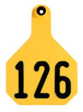 Y-Tex Numbered Ear Tags (Large), 25 count