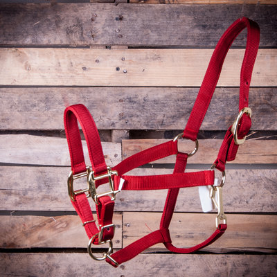 Yearling Adjustable Halter with Throat Snap, (400-600 lb)