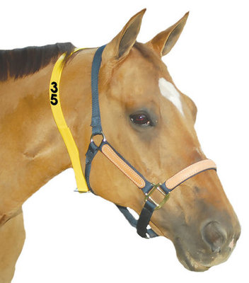 Yellow Numbered Mare ID Neck Strap