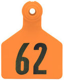 Z2 2-Piece Large Numbered Tags, Orange