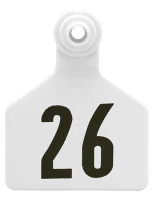 Z2 2-Piece Large Numbered Tags, White