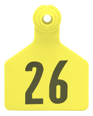 Z2 2-Piece Large Numbered Tags, Yellow