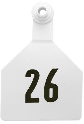Z2 2-Piece Numbered Maxi Tags, White